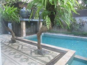 Pool. Loved this stone mosaic floor.